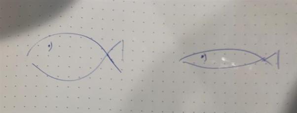 """fra rødspætte til sild - gør """"The Fish"""" spiselig"""